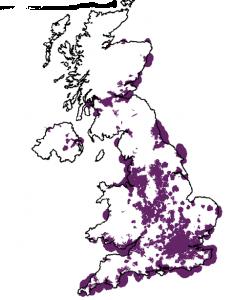 O2 mobile broadband coverage in UK - Jan 2009.  Source: Ofcom
